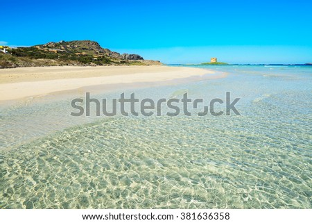 turquoise water in La Pelosa beach, Sardinia - stock photo