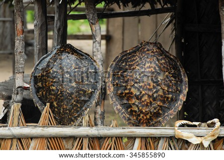 Turtle shells on sale in a stall in Mozambique  - stock photo