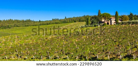 Tuscan landscape with vineyards and a mansion on a hill. - stock photo