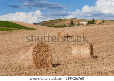 Tuscan rural landscape with hay bales on foreground and farmhouse on background. Photo taken in Tuscany, Italy. - stock photo