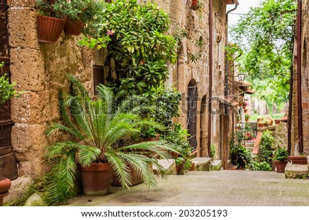 Tuscan Street in the city full of flowery porches