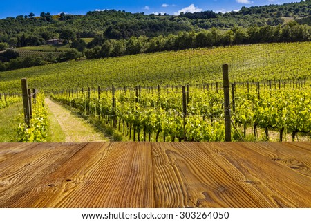 Tuscan vineyard with sticks as background. - stock photo
