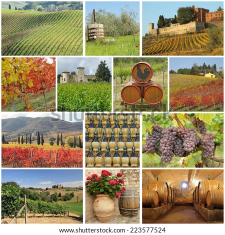 tuscan wine collage - stock photo