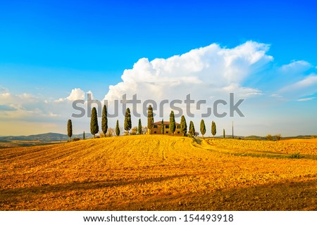 Tuscany, farmland and cypress trees and white road, country landscape. Siena, Val d Orcia, Italy, Europe. - stock photo