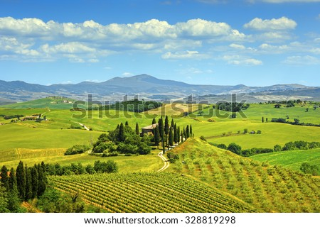 Tuscany, farmland and cypress trees country landscape, green fields. Italy, Europe.