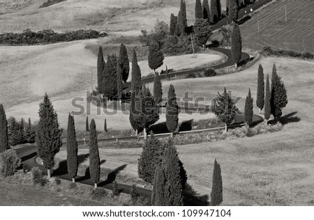 Tuscany in black and white - stock photo