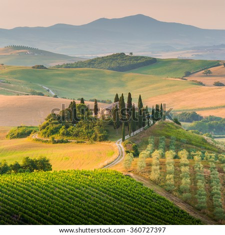 Tuscany, Italy. A lonely farmhouse with cypress and olive trees, rolling hills.