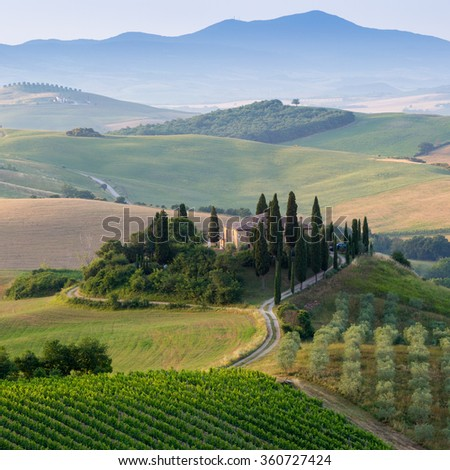 Tuscany, Italy. A lonely farmhouse with cypress and olive trees, rolling hills. - stock photo