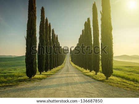 Tuscany, Landscape. Italy - stock photo