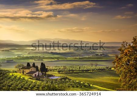 Tuscany Maremma foggy morning, farmland and green fields country landscape. Italy, Europe. - stock photo
