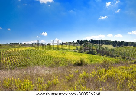 Tuscany meadows, italian rural landscape near Florence