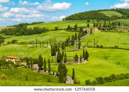 Tuscany road with cypress trees, Val d'Orcia, Italy - stock photo