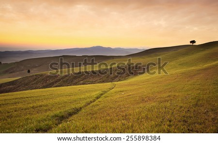 Tuscany, rolling hills on sunset. Volterra rural landscape. Green fields and trees. Italy - stock photo