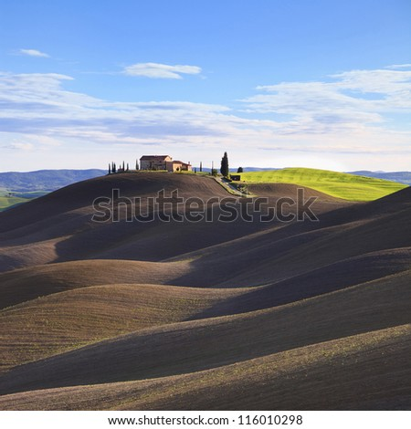 Tuscany, rural landscape in Crete Sensi land. Plowed rolling hills, countryside farm, cypresses trees, green field and blue sky. Siena, Italy, Europe. - stock photo