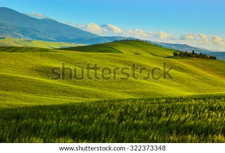 Tuscany, rural sunset landscape. Countryside farm, cypresses trees, green field, sun light and cloud. - stock photo