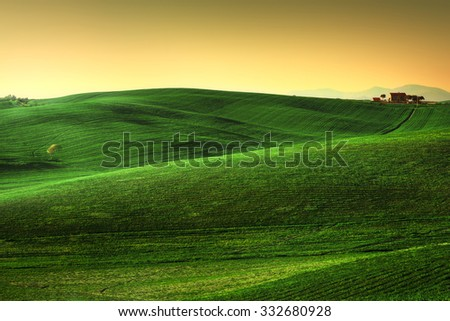 Tuscany spring, rolling hills on sunset. Rural landscape. Green fields, lonely olive tree and farmlands. Volterra Italy, Europe - stock photo