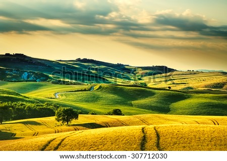 Tuscany spring, rolling hills on sunset. Volterra rural landscape. Green fields and trees Italy, Europe - stock photo