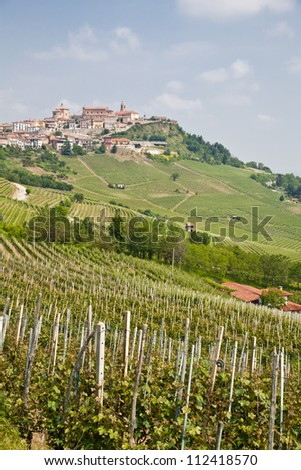 Tuscany. Vineyard in the middle of the most famous wine region of Italy. - stock photo