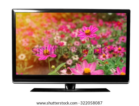 tv with the flowers on white
