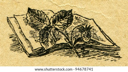 """twig of wild strawberry is an open book - an illustration from the book """"In the wake of Robinson Crusoe"""", Moscow, USSR, 1946. Artist Petr Pastukhov - stock photo"""