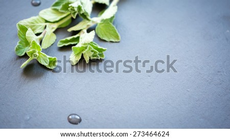 Twigs of fresh oregano on a dark stone background. Shallow DOF - stock photo