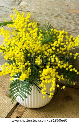 Twigs of mimosa flowers in pail on blue wooden table - stock photo
