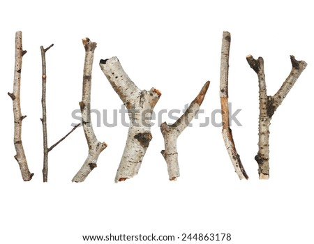 Twigs, set macro dry branches birch isolated on white background, (high resolution) - stock photo