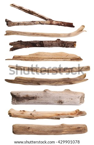 twigs, set macro dry branches isolated on white background, with clipping path