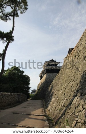 Twilight at Ehime castle in Japan