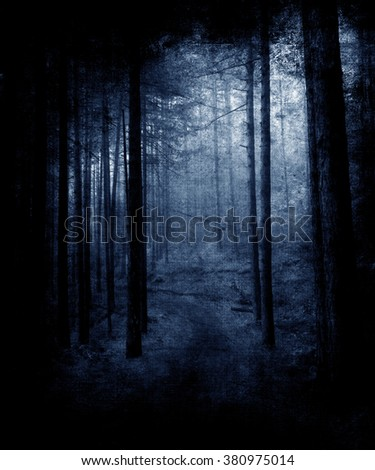 Twilight in the forest, scary trees, mystic grunge vintage beautiful landscape - stock photo