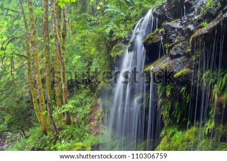 Twin Falls, Gifford Pinchot National Forest