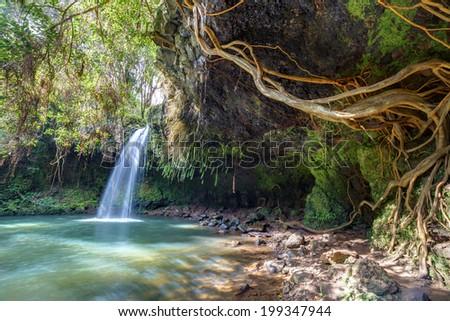 Twin falls wilderness, lush tropical waterfall on the island of maui, Hawaii - stock photo