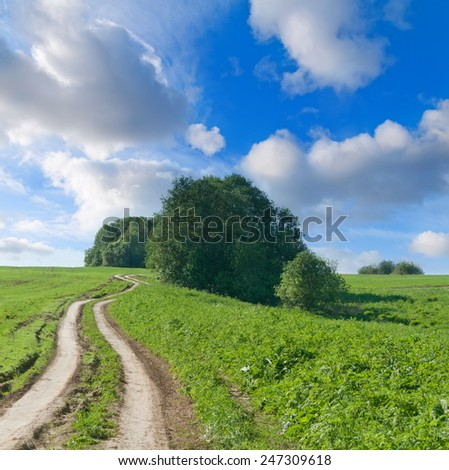 Twisting field road in hills and willow bushes. - stock photo