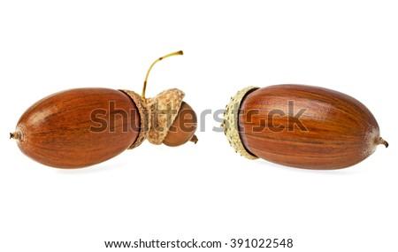 Two acorns isolated on white background - stock photo