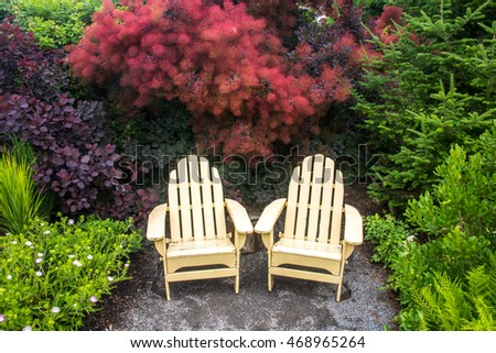 two adirondack chairs in front of red leaved plant