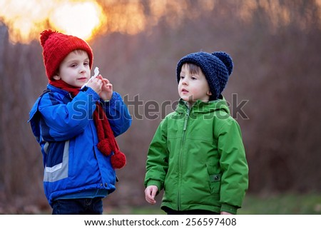 Two adorable boys, brothers, on a winter day, sunset time, one using tissue, the other sneezing - stock photo