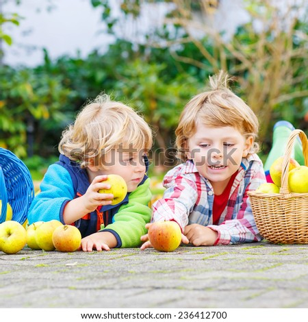 Two adorable little children eating apples in home's garden, outdoors. Own harvest. Boys in colorful rubber boots on autumn day. - stock photo