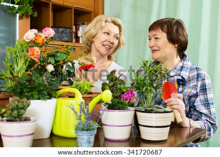 Two aged women taking care of decorative plants in pots
