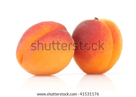 Two apricots isolated on a white background