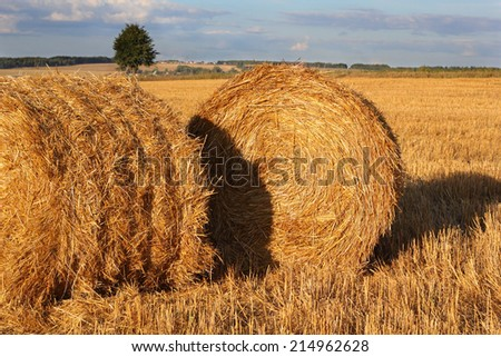 Two bales of hay on the stubble field photo - stock photo
