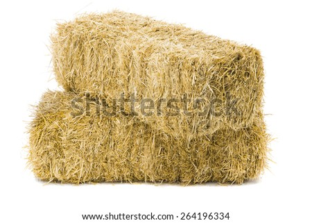 Two bales of hay on white background - stock photo