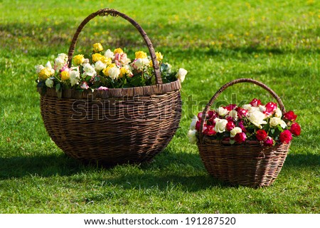 two baskets with roses on a grass - stock photo