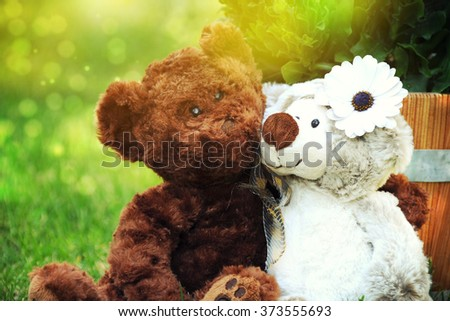 Two bears holding in one's arms