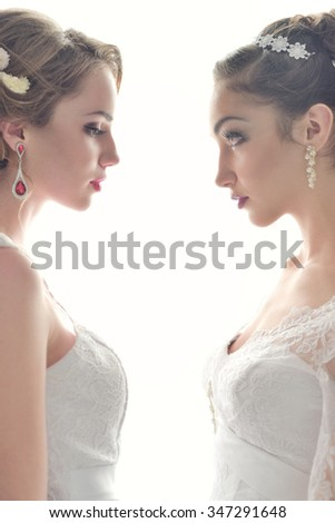 Two beautiful bride posing together - stock photo