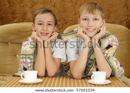 Two beautiful Caucasian brother sitting on the couch - stock photo