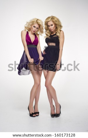 Two beautiful ladies  - stock photo