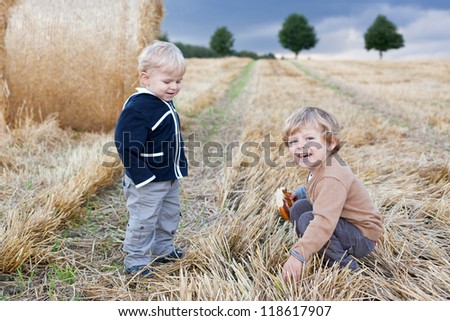 Two beautiful little toddler boys having fun on straw field in summer