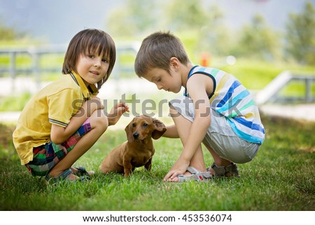 Two beautiful preschool children, boy brothers, playing with little pet dog in the park, summertime - stock photo