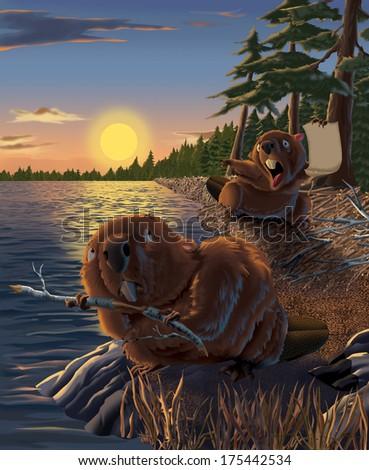 Two beavers rush to complete their dam before nightfall. - stock photo