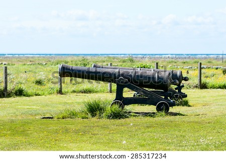 Two big cast iron cannons from the year 1766 pointed out to sea. Cannons stand on green grass with ocean in background. - stock photo